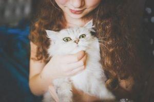 bebés y gatos en casa